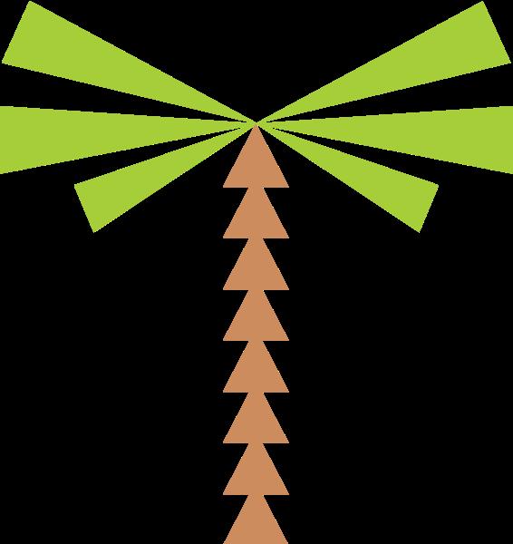 椰子树树叶树绿树植物