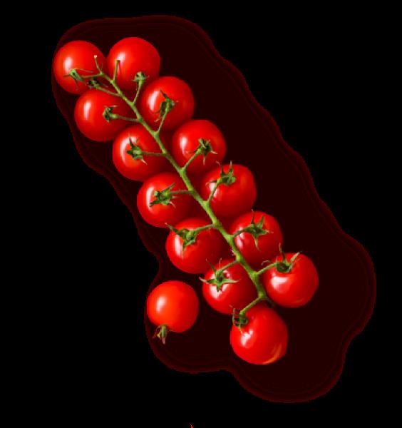 小番茄圣女果番茄水果蔬菜