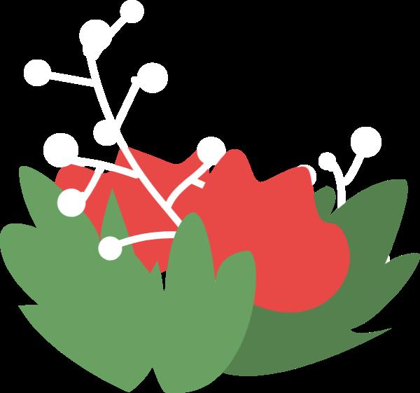 花花卉花朵氧气绿植