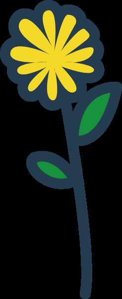 花朵花花卉绿植植物