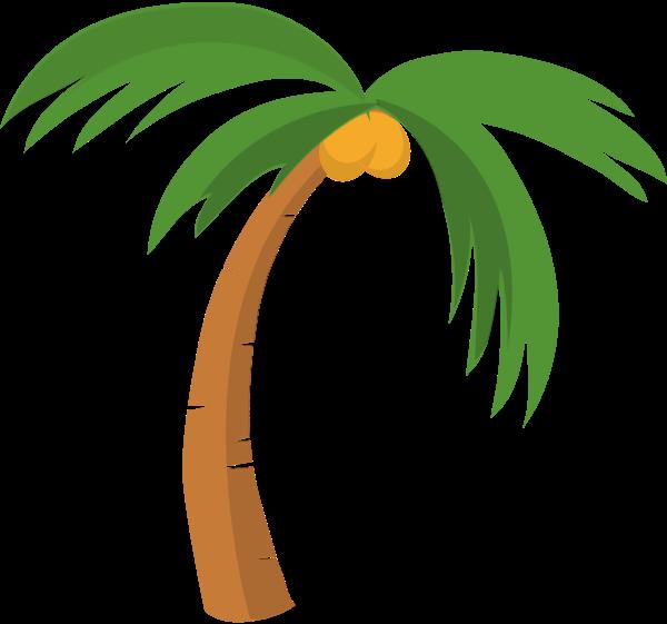树树木椰子树椰树植物