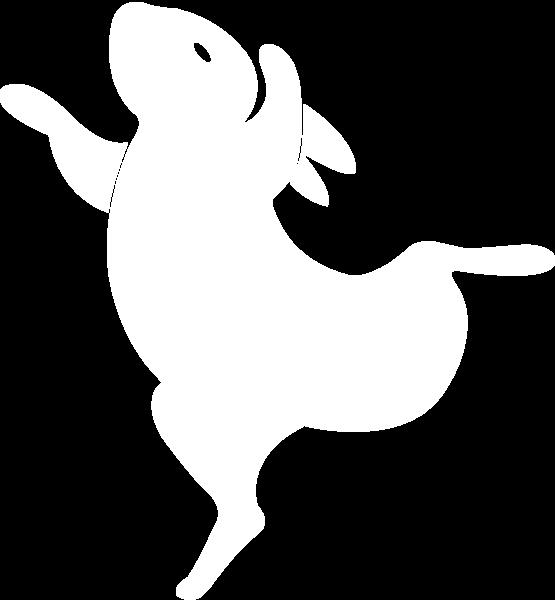 兔子兔跳舞跳跃动物