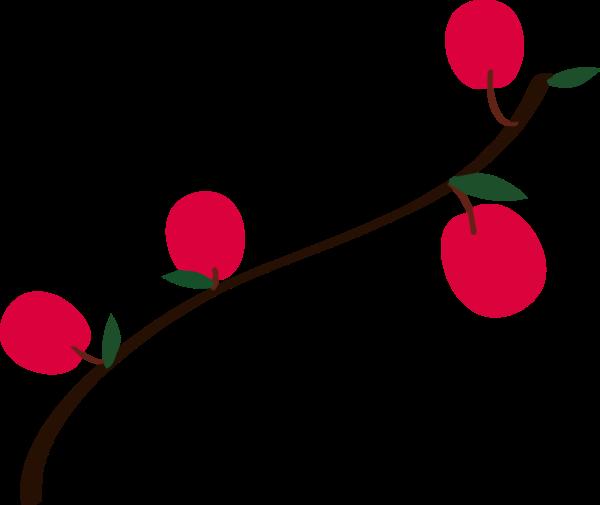 樱桃车厘子甜蜜苹果水果