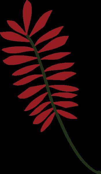 绿叶树叶叶子红色秋天