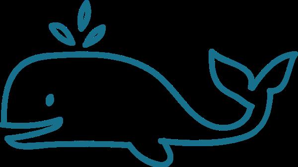 鲸鱼简笔动物可爱手绘