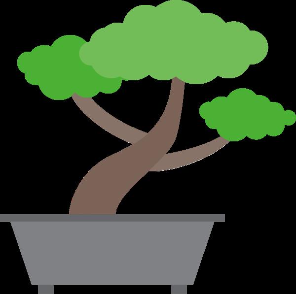 树盆栽绿叶旅行植物