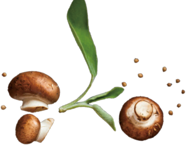 蘑菇香菇抠图蔬菜时蔬