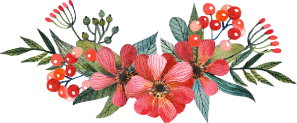 花植物花卉花朵手绘
