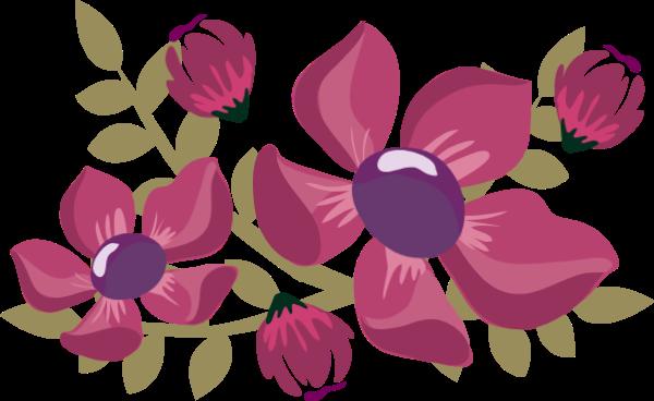 花花卉花朵装饰紫色