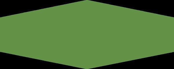 便签横幅六边形绿色背景