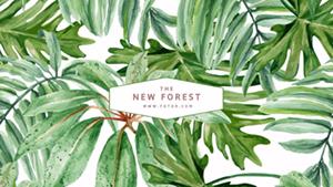 绿色自然主题封面
