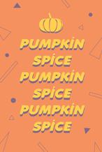 橙色简约南瓜香料海报