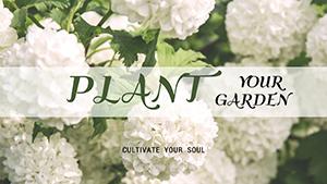 白色花卉主题封面